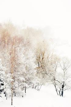 Jenny Rainbow - Lacy Winter 1