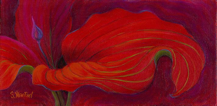 Lady in Red by Sandi Whetzel