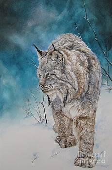 Lady Lynx by Nonie Wideman