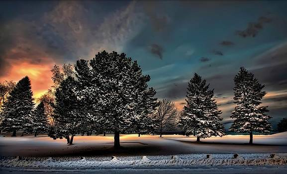 Lady winter  bringing a cold snap by Jeff S PhotoArt