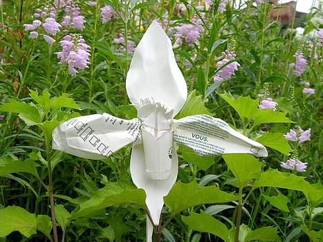 Alfred Ng - ladyslipper orchid sculpture