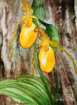 Ladyslippers by Deb Stroh Larson