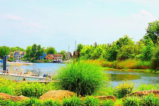 Lagoon  by Judy Palkimas