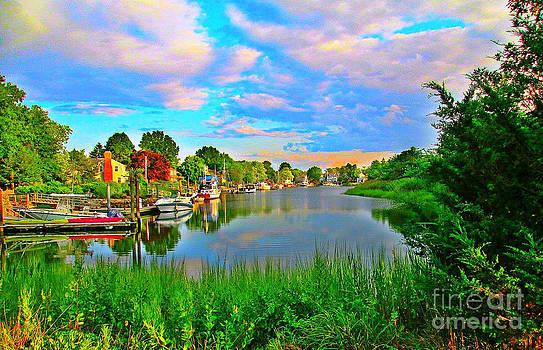 Lagoon Sunset by Judy Palkimas