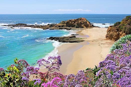 Jane Girardot - Laguna Beach Coastline