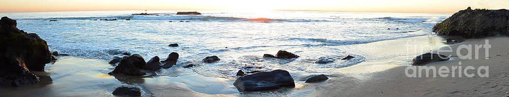 Laguna Beach Panoramic by Timothy OLeary