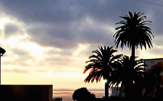 Laguna Beach Sunset 4 by Dan Twyman