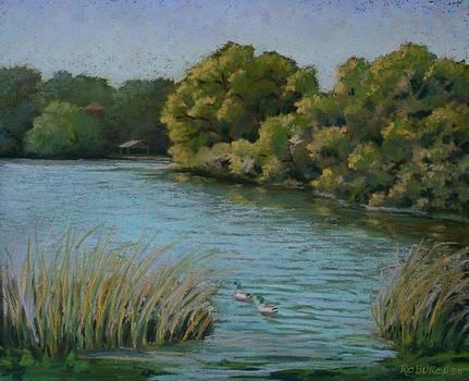 Laguna Gloria by Regina Calton Burchett