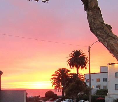 Laguna Sunset 2015 by Dan Twyman