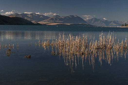 Lake at dusk by Photographos ORG