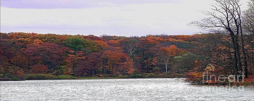 Gena Weiser - Lake at Hinckley Reservation 2 - Panorama