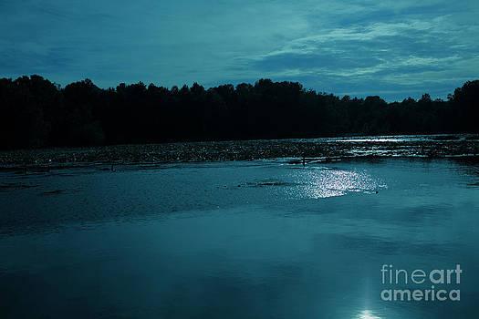 Lake by night by Sanjay Deva