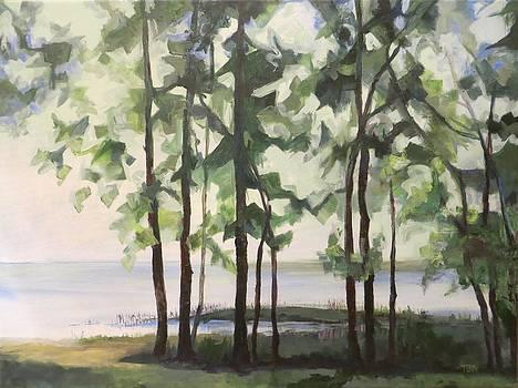 Lake Champlain by Terri Messinger