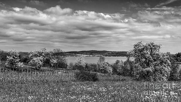 Lake Constance I by Bernd Laeschke