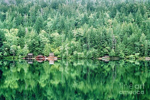 Douglas Taylor - LAKE CRESCENT REFLECTION