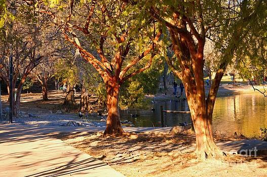 Lake Ella Trail by Gail Kent