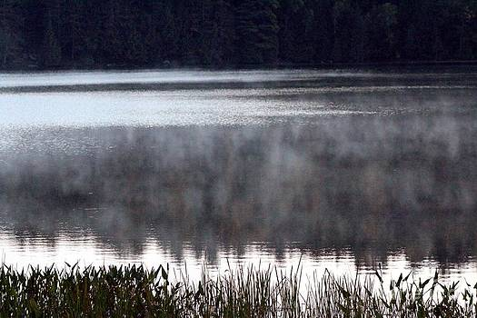 Lake Fog by Margaret Hamilton