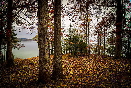 Lake Hartwell Autumn by Steve DuPree