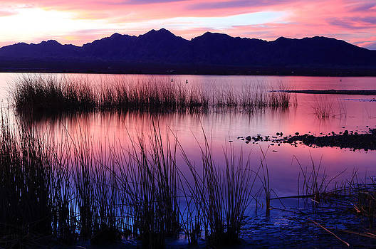 Lake Havasu Sunset by Eric Foltz