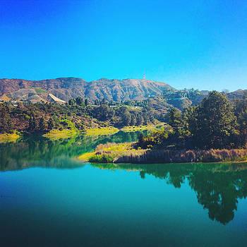 Lake Hollywood by Barry Shereshevsky