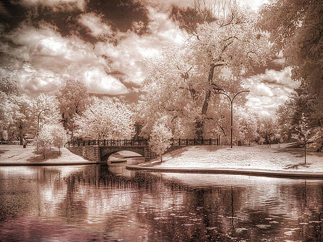 Lake in Infrared by Jay Swisher