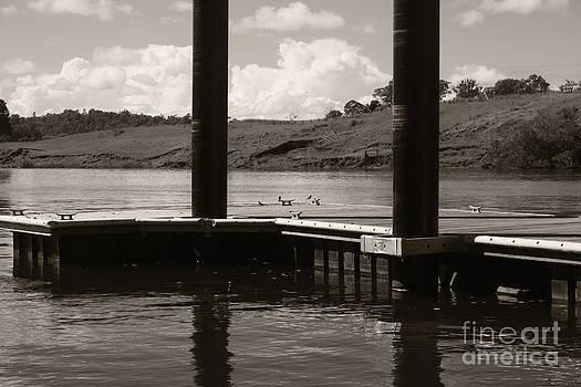 Lake in Three by Sarah Sutherland