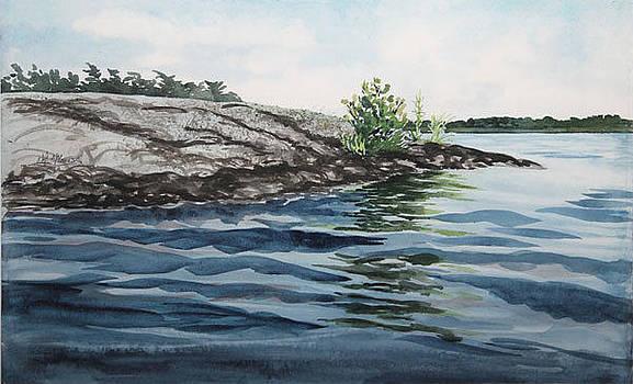 Lake Joseph Muskoka  Waterline by Nola McConnan