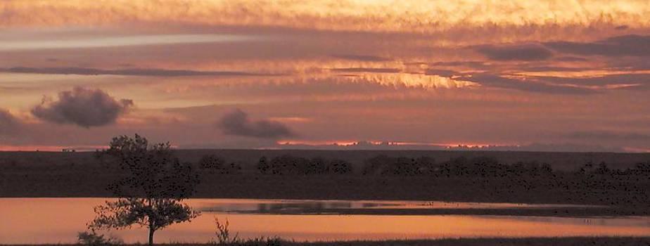 Lake Luster by Look Visions
