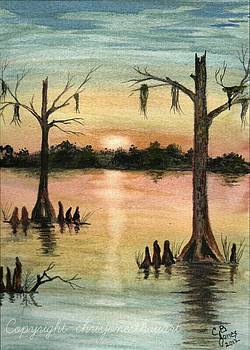 Lake Maurepas by Chris Bajon Jones