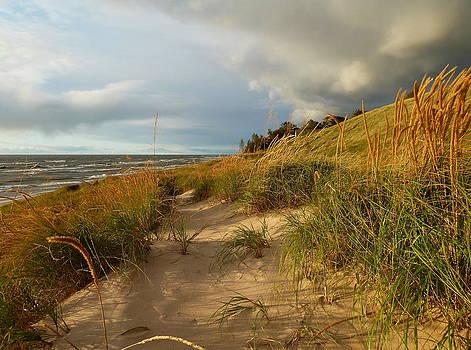 Lake Michigan Storm Finally Over by Merridy Jeffery