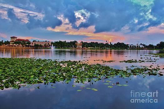Lake Mirror by Wendy Ohlman