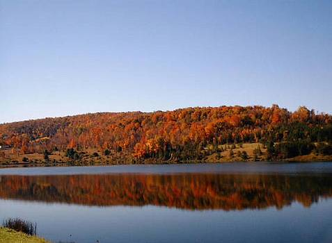 Lake Nessmuk Autumn Reflections by Liz Lare