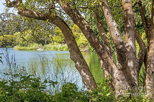 Kate Brown - Lake Overlook