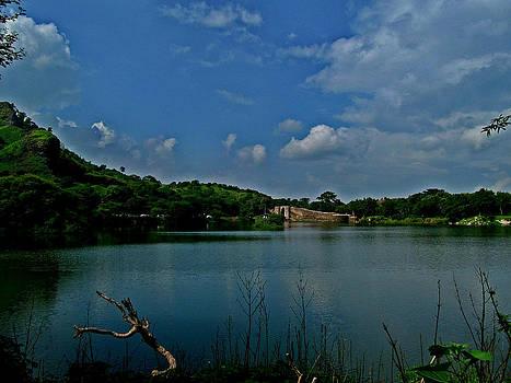 Lake by Paresh Bhanusali