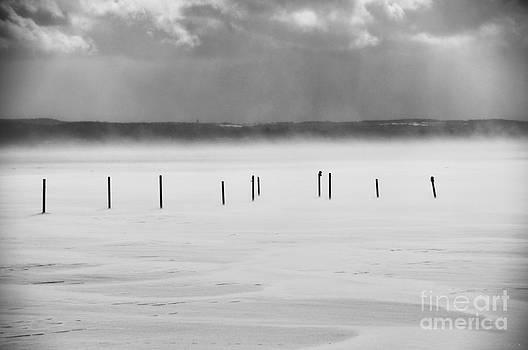 Lake Posts 2011 by Joseph Duba