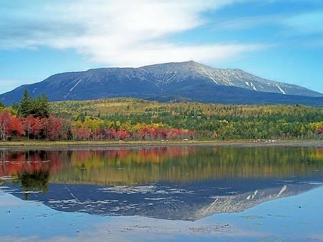 Gene Cyr - Lake Reflection