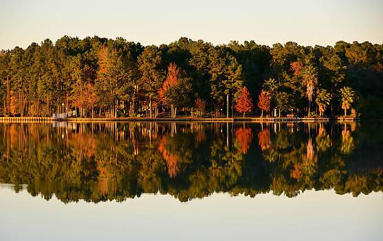 Lake Reflection  by Shey Stitt