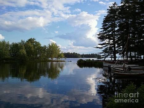 Carolyn Kami Loughlin - Lake Reflections