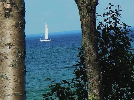 Lake Sailing by Fawn Whelahan