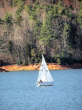Lake Sailing by Michael Creamer