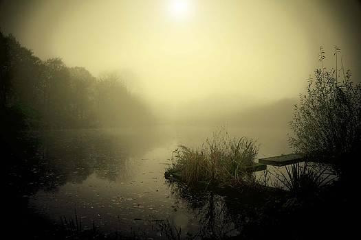 Lake Stadspark Groningen by Aaldrik Bakker
