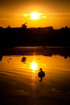 Lake Sunrise by Robert Hainer