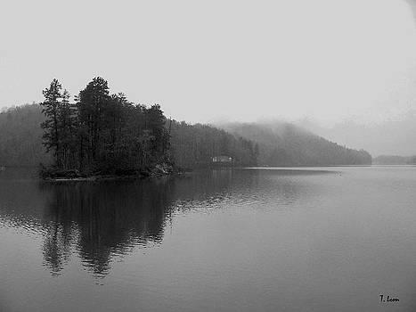 Lake by Thomas Leon