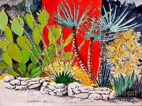 Lake Travis Cactus Garden by Fred Jinkins