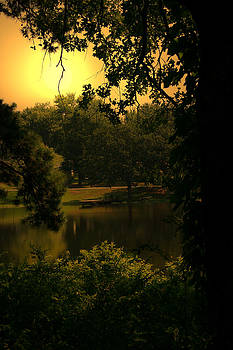 Nina Fosdick - Lake View
