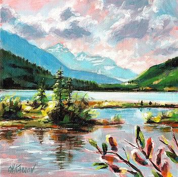 Lake View - Rocky Mountains by Christine Karron