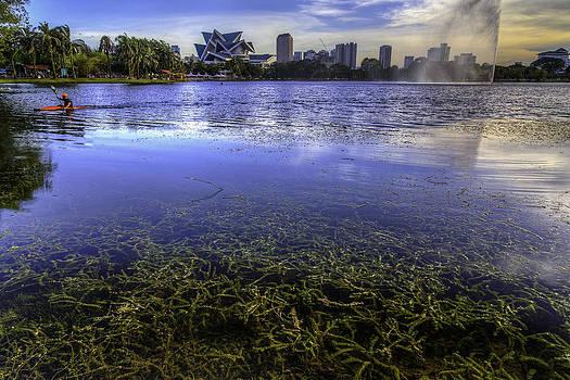 Lake Weeds by Mario Legaspi