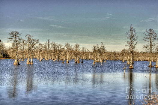 Lake with Trees by Jonathan Harper