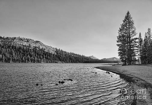 Chuck Kuhn - Lake Yosmite Park