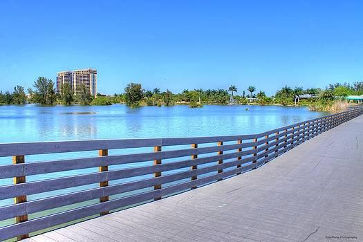 Lakes Park Boardwalk by Vanessa Parent